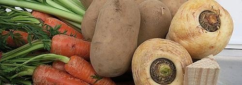 Alte Sorten und Biosaatgut